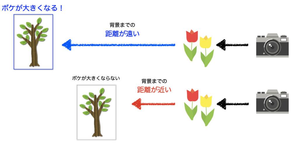 大きなボケの作り方(背景と被写体の距離を置く)