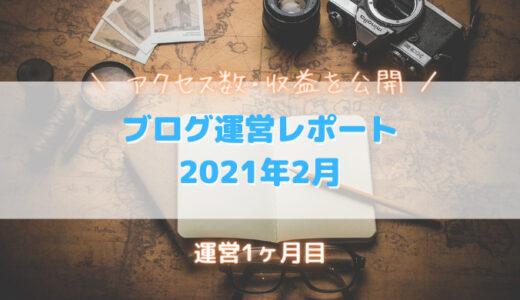 ブログ報告|2021年2月期の収益・PV数を公開します|運営1か月目