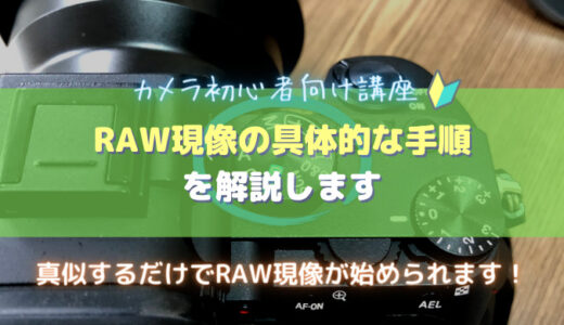 RAW現像の基本的なやり方を解説|手順付き・カメラ初心者向け